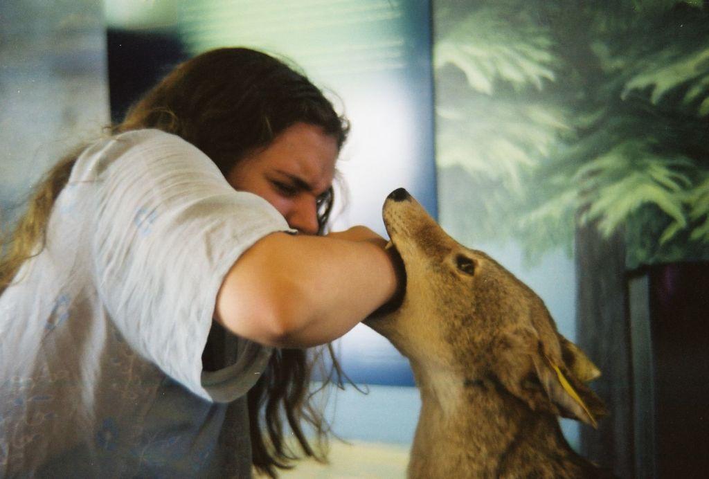 Что делать если укусила собака —симптомы бешенства