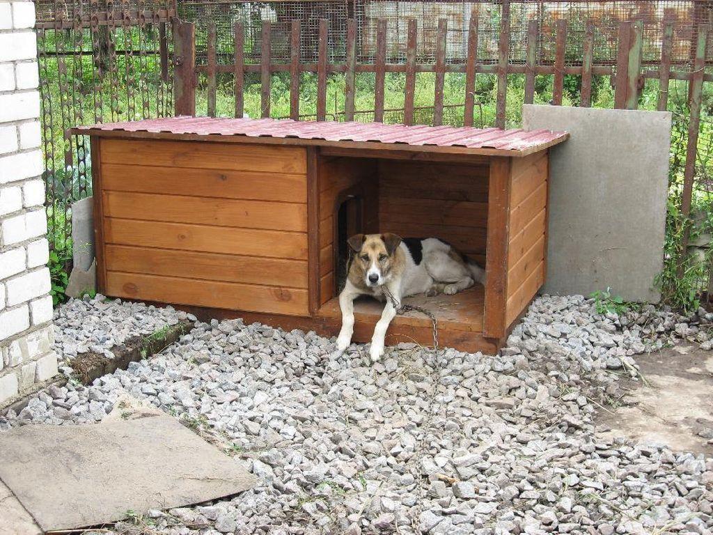 Размер будки делается в соответствии с размерами взрослого пса