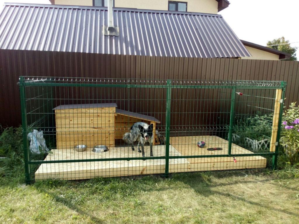 Вольеры для собак должны быть установлены неподалеку от двери в дом