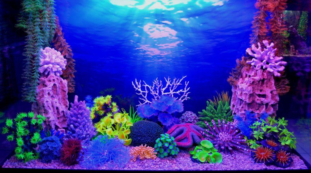 3D-Фон аквариума