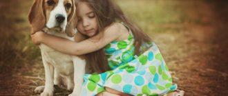 Возраст собаки по человеческим меркам