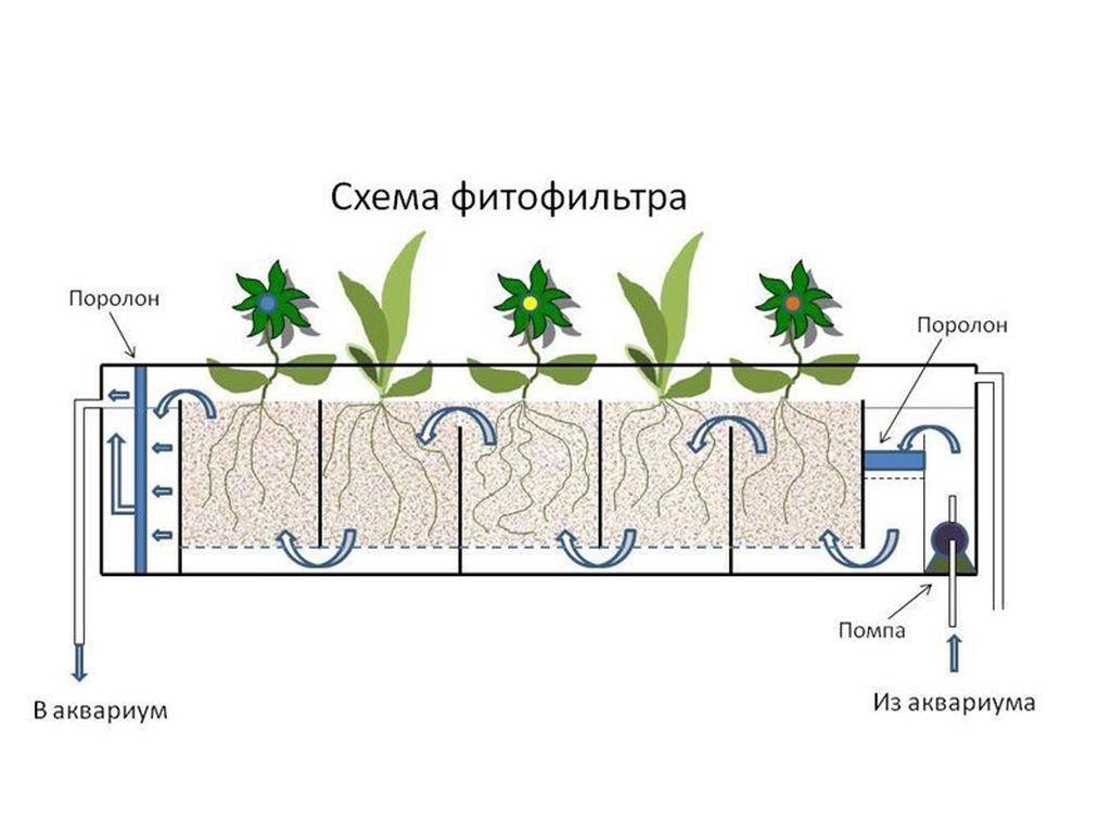Схема работы фитофильтра