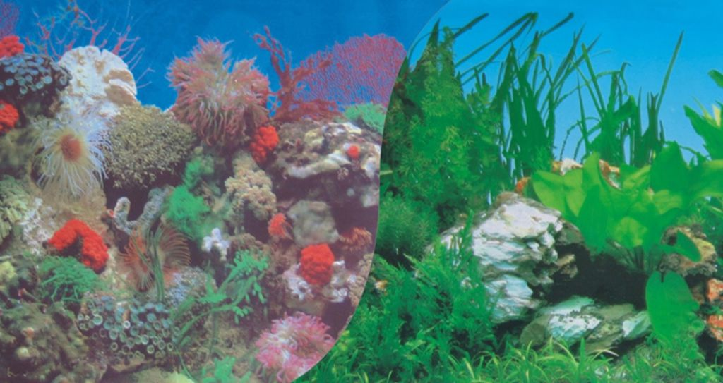 Фон пленка для аквариума