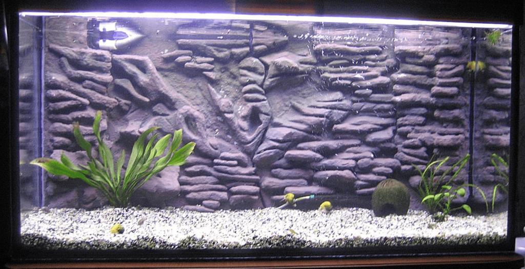Задний фон для аквариума рельефный
