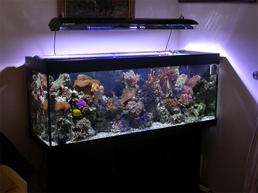 Подсветка для аквариума своими руками