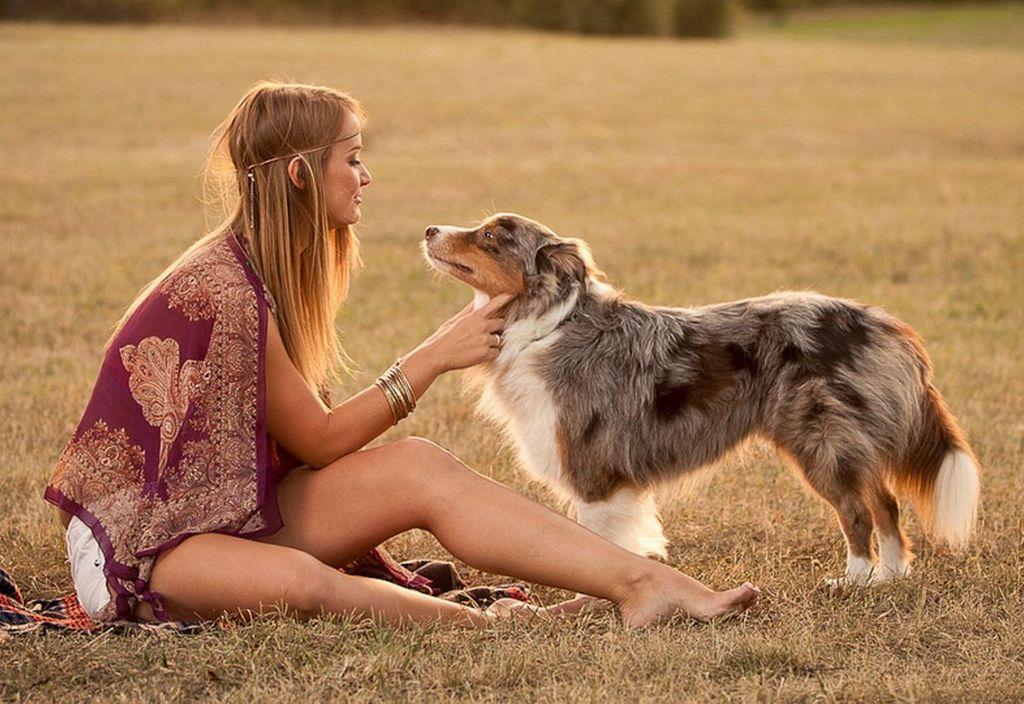 Собаки считаются самыми преданными животными