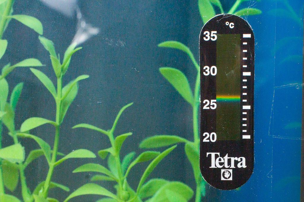 Немаловажным показателем при выборе термометра для емкости является надежность крепления