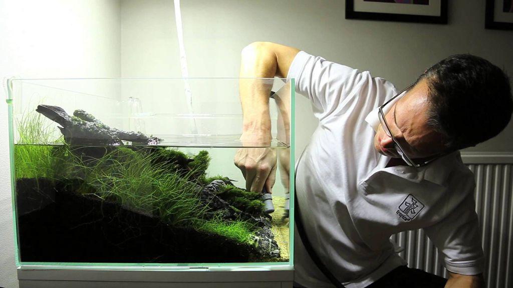 Перед заливкой обязательно нужно убедиться, что подготовленная вода такой же температуры, как и та, что была в аквариуме изначально
